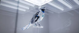 EnBW birds E-Mobility
