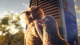 EnBW birds mobility+ app